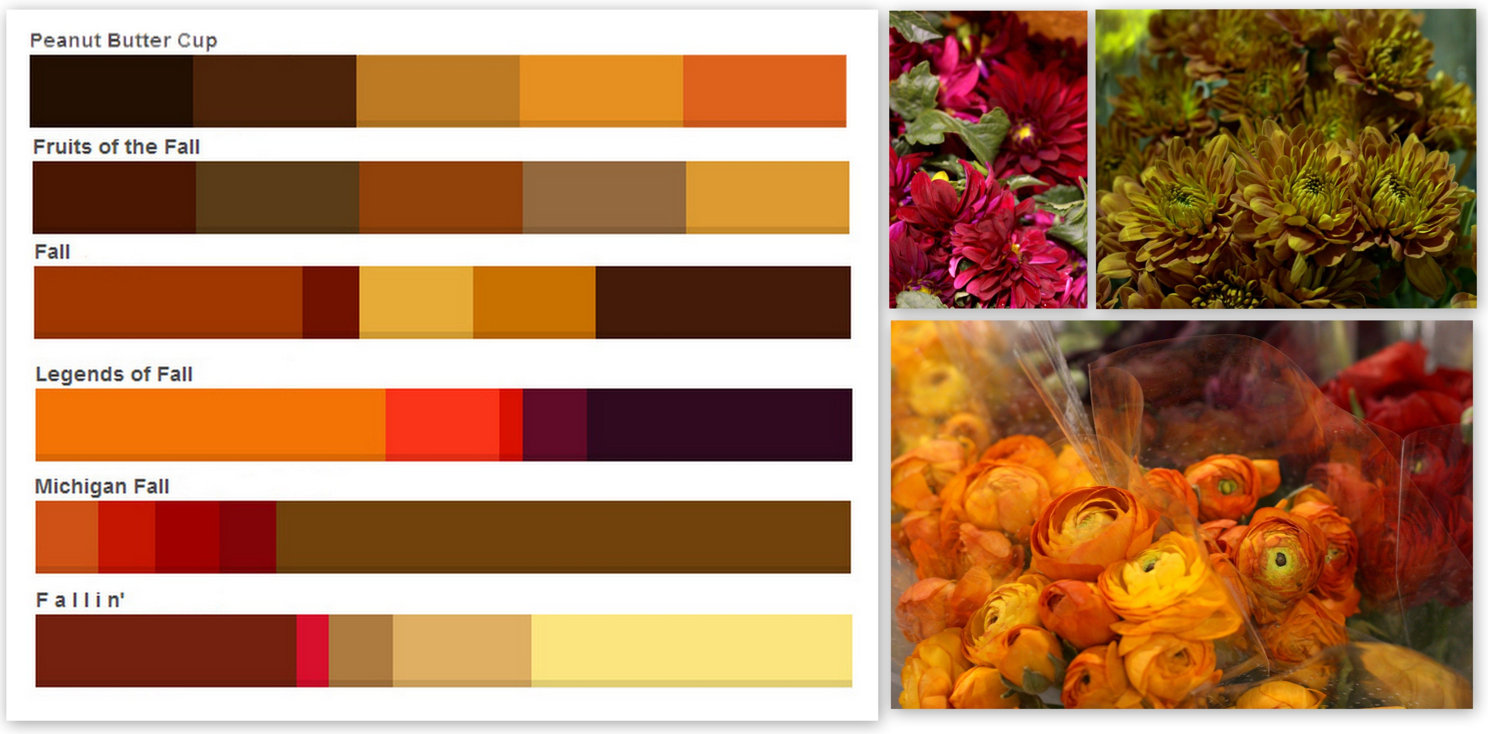Fall Color Schemes Prepossessing Fall Colors Palettes  Color Inspiration Warm Colors And Mood Boards 2017