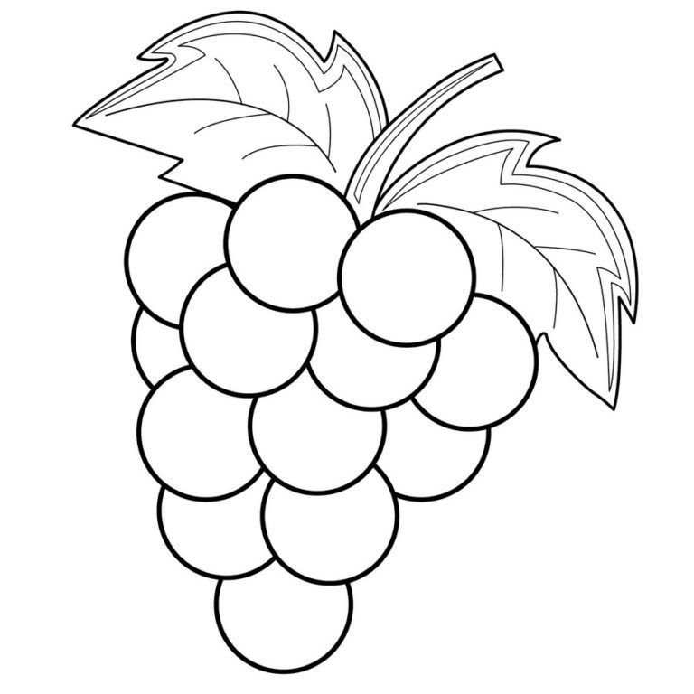 Pictures Of Grapes To Color Coloring Pages Fruit Coloring Pages