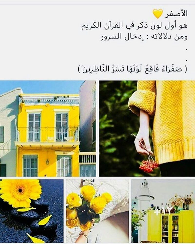 Arabic Quotes Beautiful Arabic Words Quotes For Book Lovers