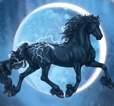 bella+sara+horses | ... Bella Sara app: https://itunes.apple.com/us/app/bella-sara/id559737378