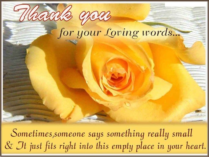 Thank You Card Quotes Printable Card Pinterest – Thanks Card Words