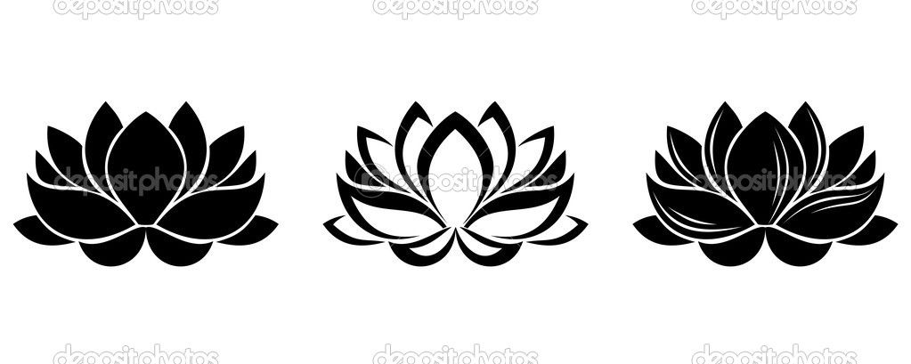 Lotus Flowers Silhouettes Set Of Three Vector Illustrations