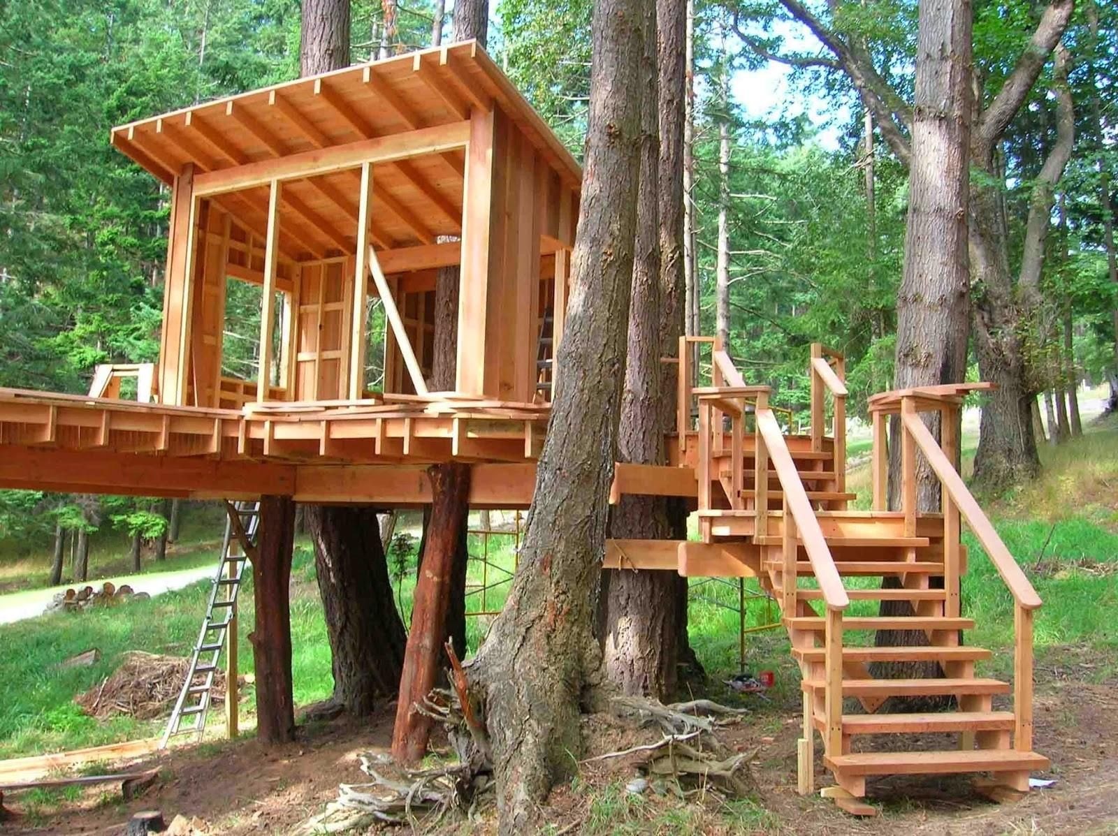Amazing Tree House Ideas For Kids Rumah Kebun Rumah Pohon