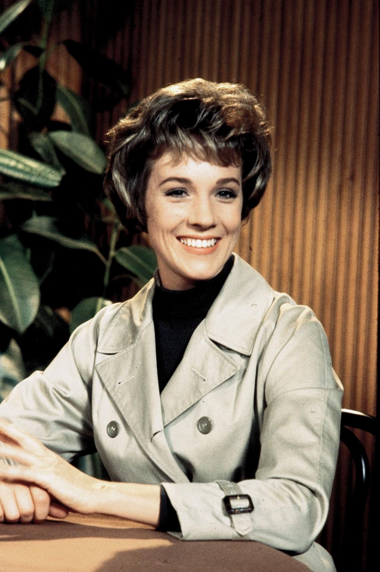 "Julie Andrews in ""Torn Curtain"" (1966) 