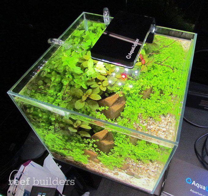 Aqualighter Nano Led Aquarium Light Aquariums Reef