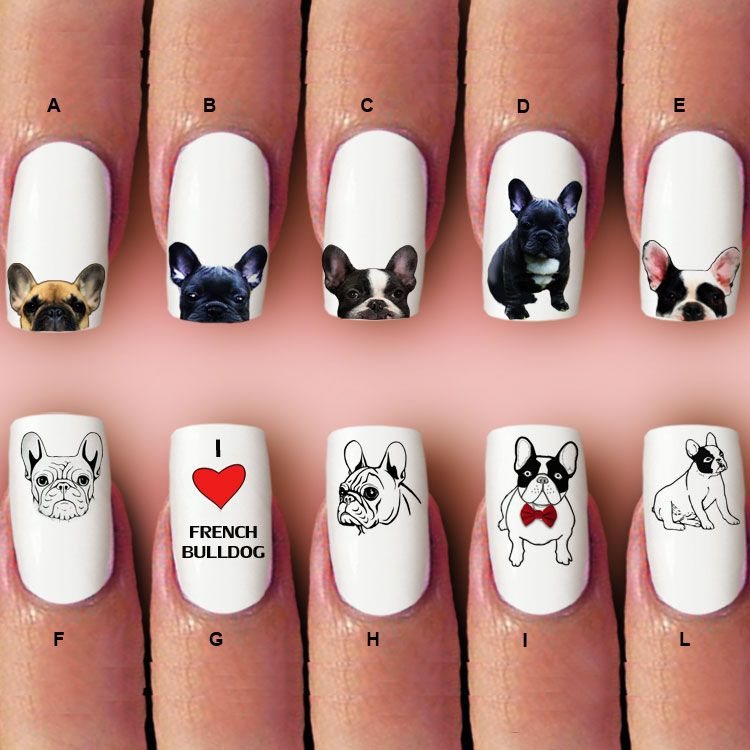Bulldog French, nail art, Nail decal, 60 pc waterslide nail decal ...