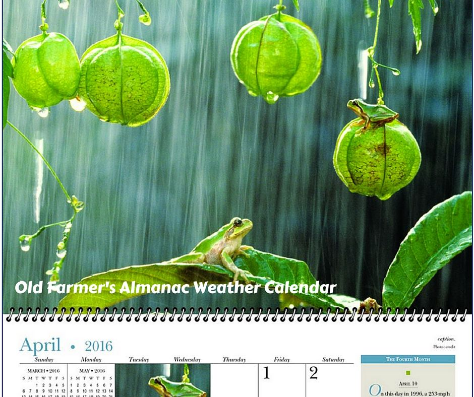 reamark offers 10 different styles of real estate marketing calendars to fit any need or budget