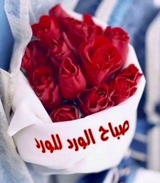 Desertrose صباح الورد للورد Beautiful Arabic Words Morning Images Good Morning