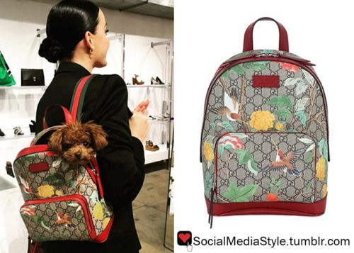 72535a6c8498 Katy Perry's Gucci Hummingbird Backpack in 2019 | Katy Perry: Social ...
