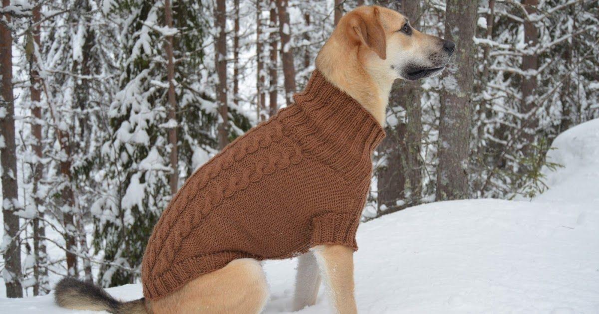 Koiran Villapaita Novita Isoveli Langasta Knitting Dog Cat Dogs