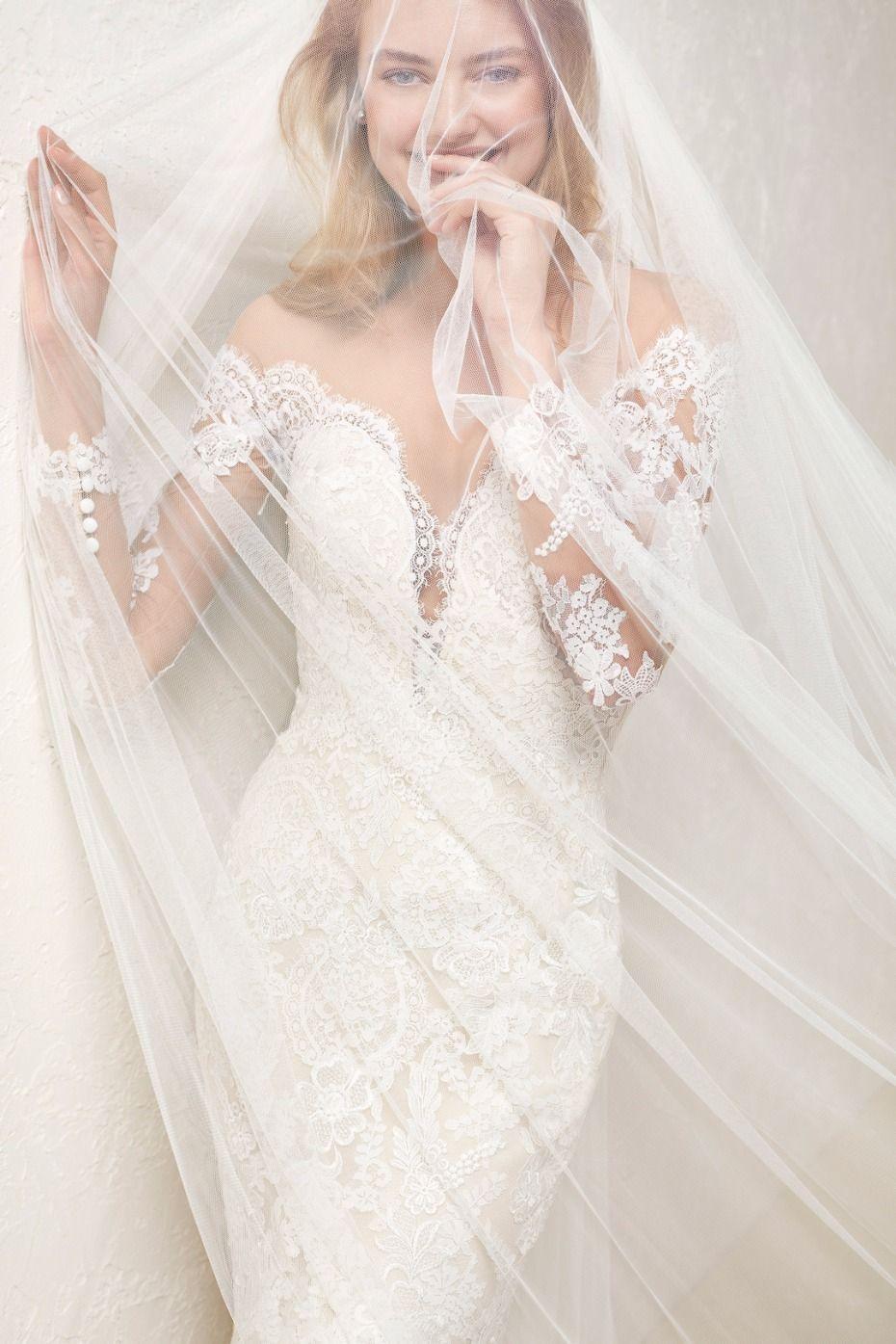 Lace v cut wedding dress and wedding veil pronovias wedding dress