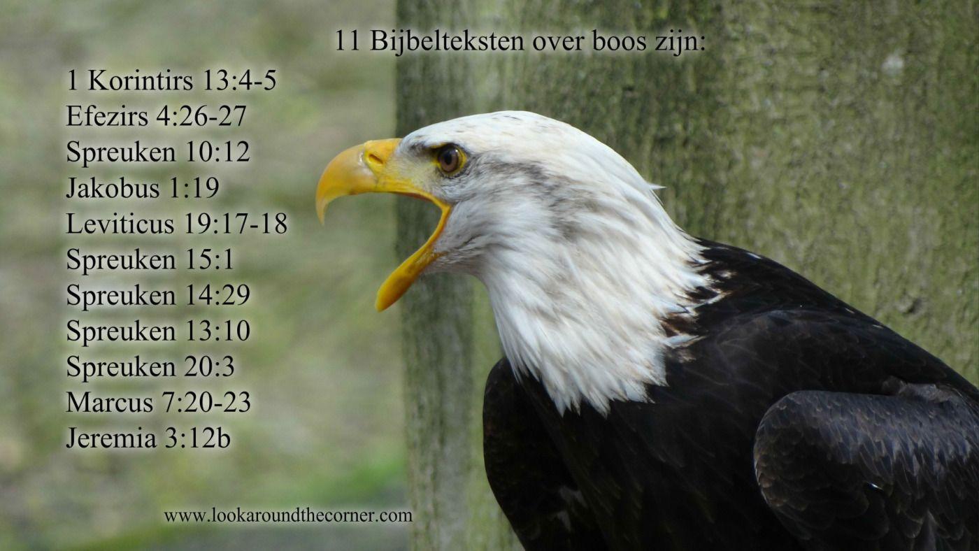 spreuken 13 vers 3 Gratis uit te printen Bijbelteksten over boos zijn.   Look Around  spreuken 13 vers 3