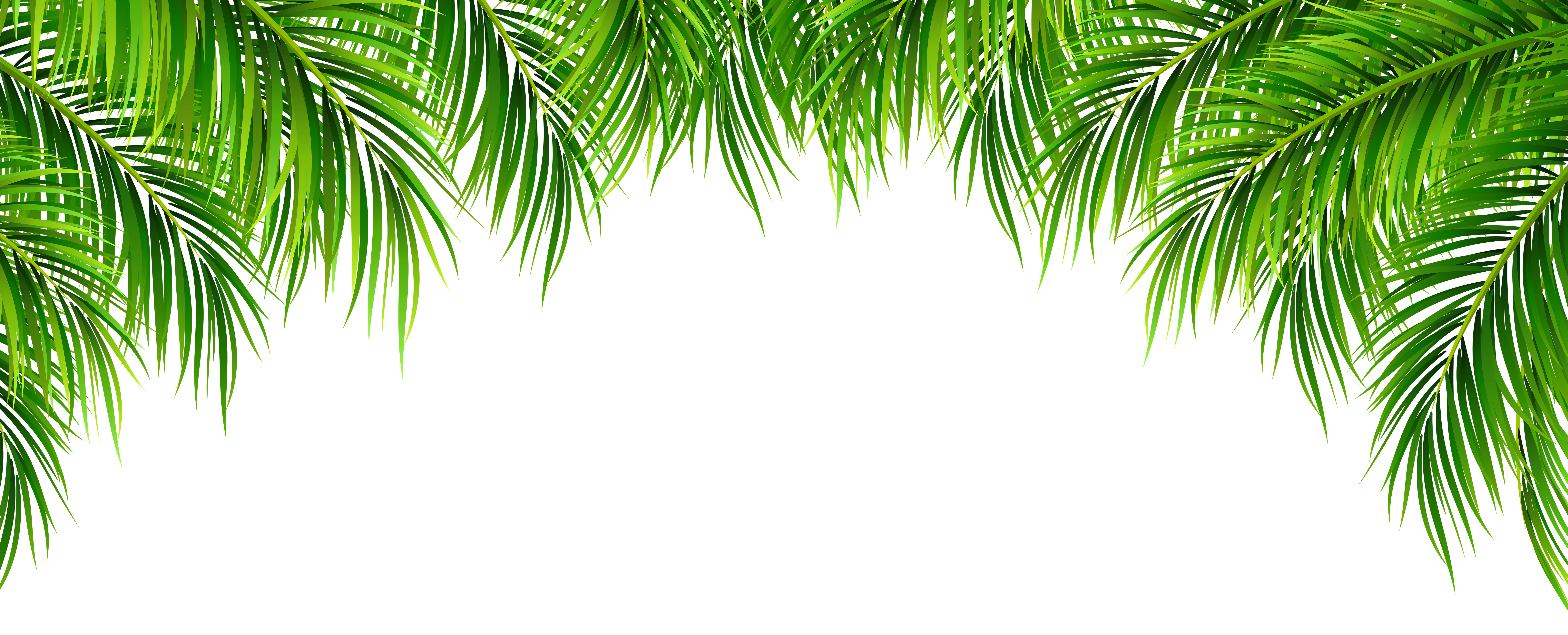Palm Leaves Decor Png Clip Art Image Gallery Yopriceville High Quality Images And Transparent Png Free Clipart Palm Leaf Decor Leaf Decor Palm Leaves