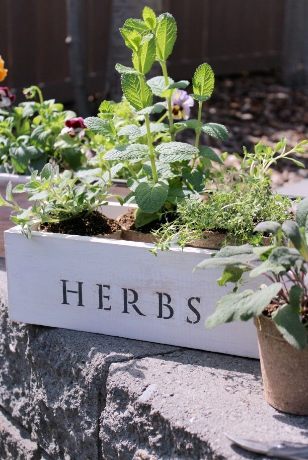 Check out these trash to treasure vintage tool box planters with flowers and herbs, plus more outdoor gardening projects!