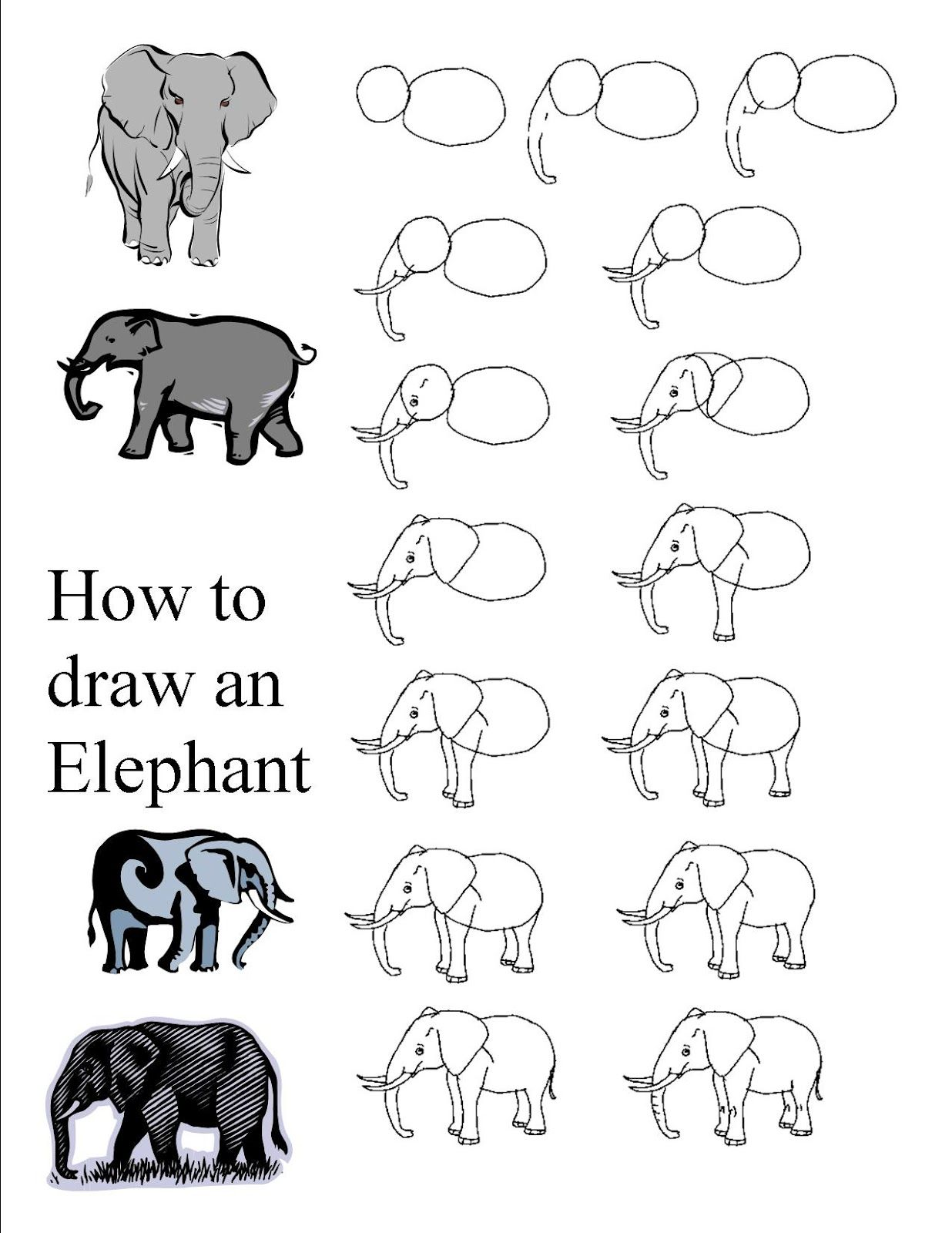 How To Draw An Elephant Jpg 1 236 1 600 Pixels Elephant Drawing