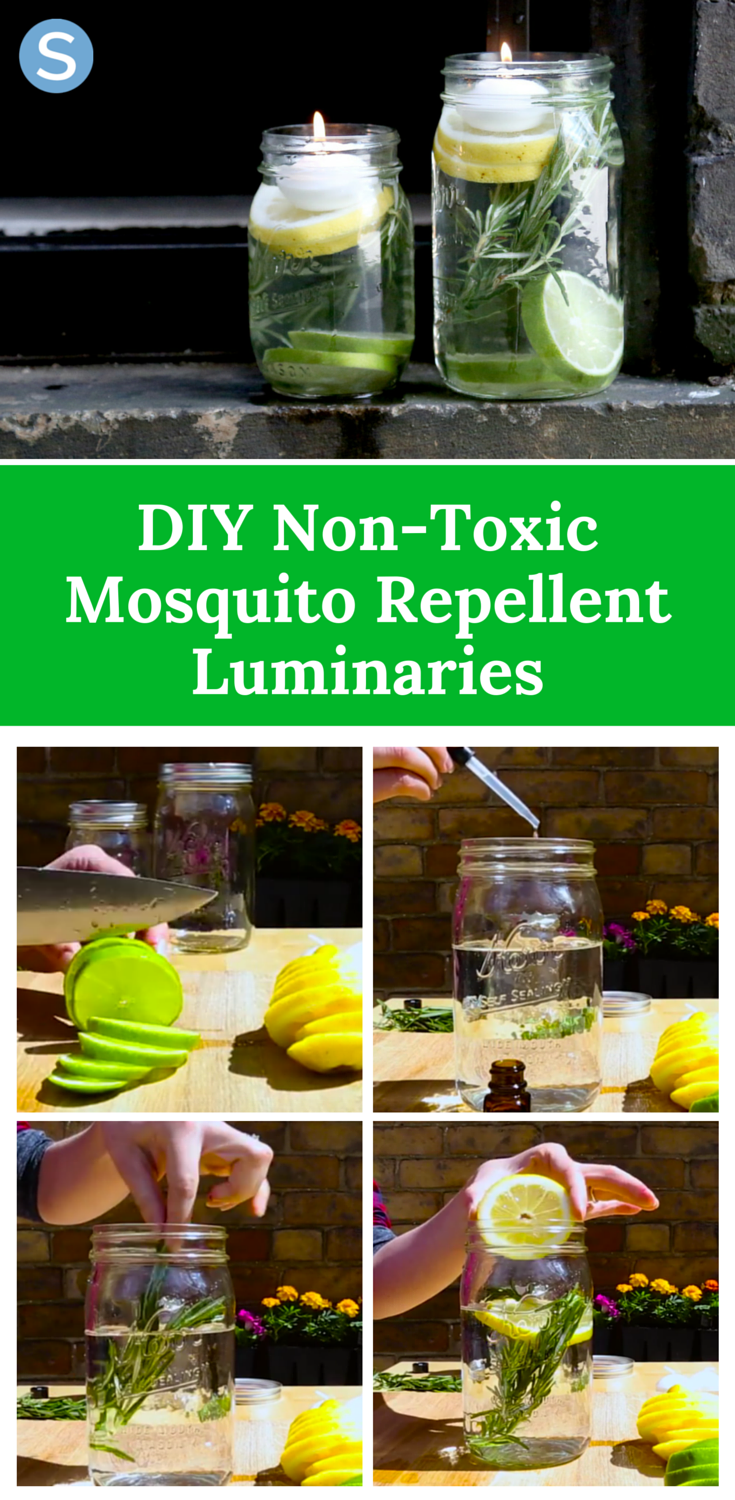 Repel Mosquitos And Bugs With These Easy Diy Mosquito Repellent Luminaries Http