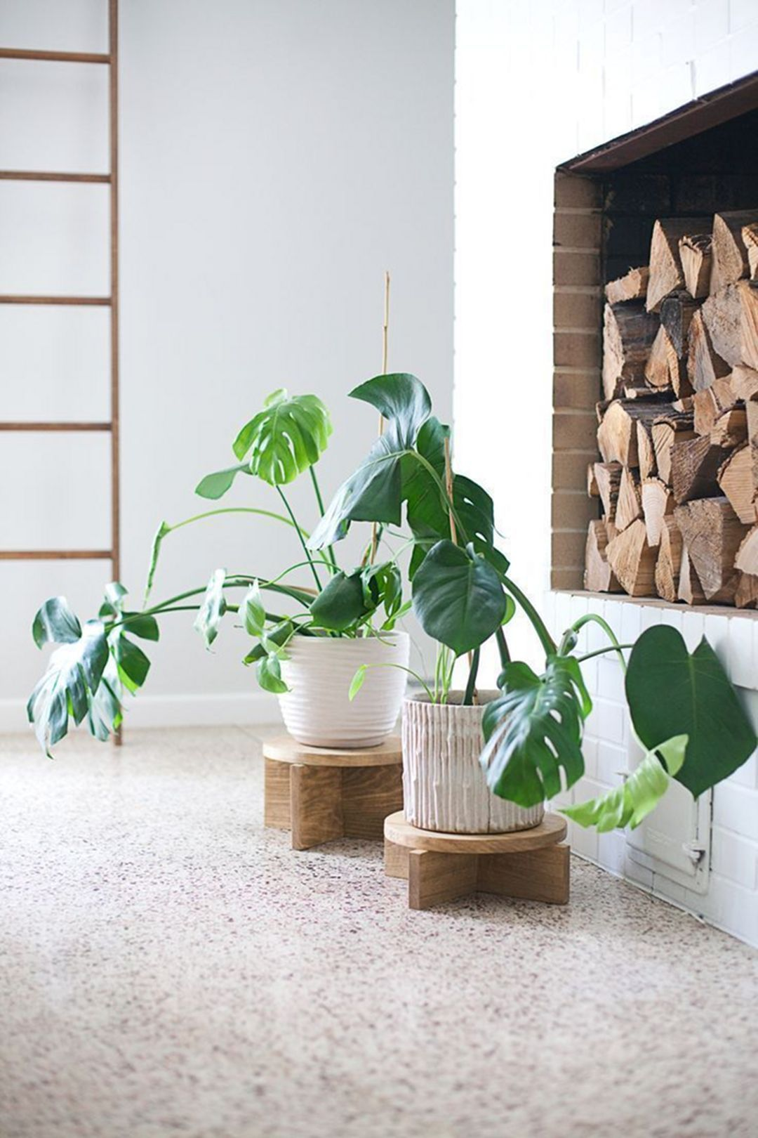 10 Cool Diy Indoor Plant Shelves To Enhance Your Room 640 x 480