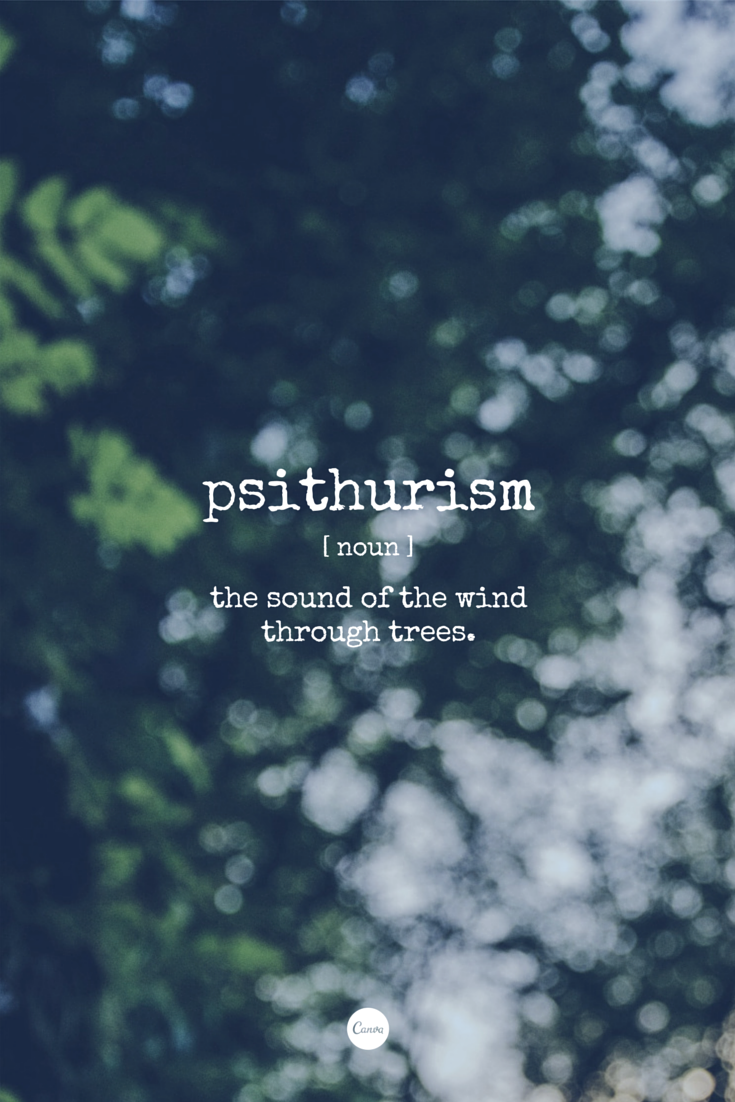Word of the Day: Psithurism  The sound of the wind through trees