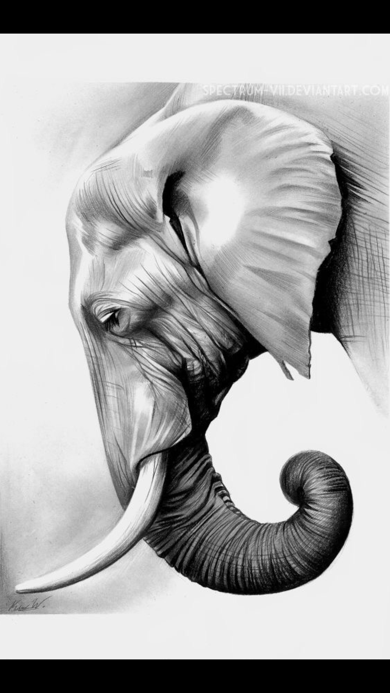 Mas Imagenes De Estos Elefantes T K Pinturas De Elefantes Dibujos De Elefantes Pintura De Elefante