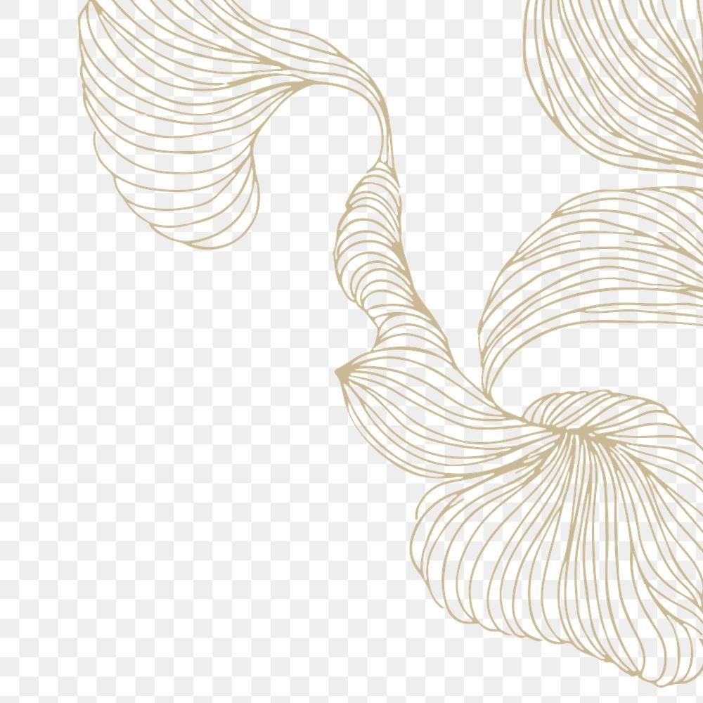Download Premium Png Of Beige Swirly Line Frame Design Transparent Png By Adj About Line G Beast Wallpaper Pretty Wallpaper Iphone Iphone Background Wallpaper