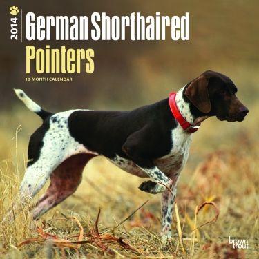 German Shorthaired Pointer Dog Training Books Dogs Bird Dog