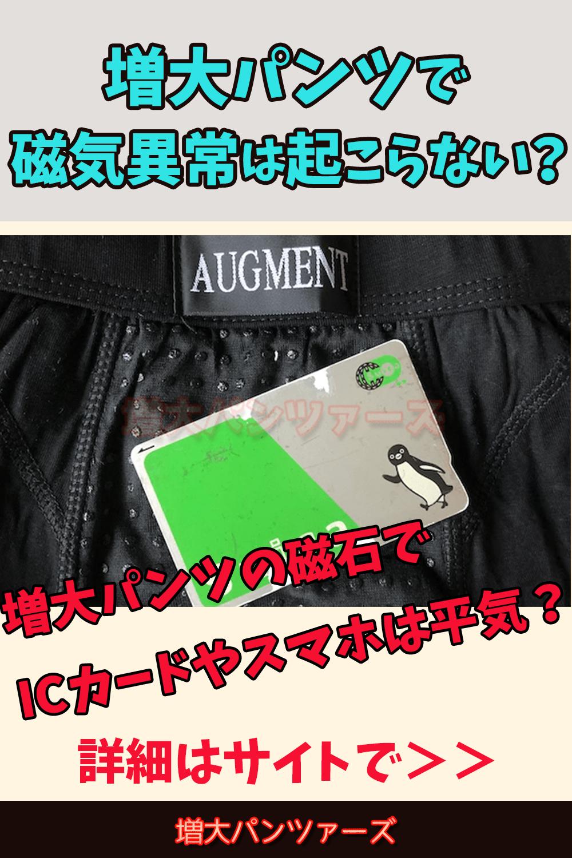 磁石 アグメント パンツ