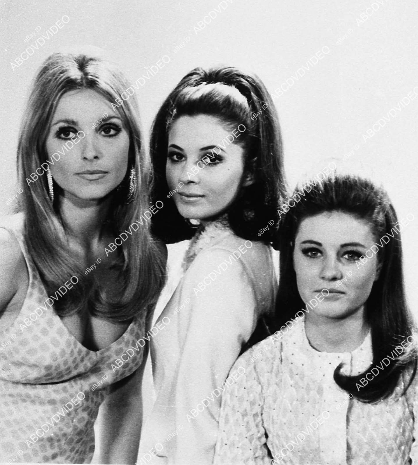 6466 014 Sharon Tate Barbara Parkins Patty Duke Película Valle De Las Muñecas De 6466 Ebay