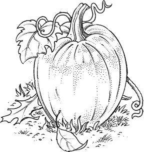 risultati immagini per pumpkin leaf template printable