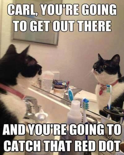 Carl, You're going to get out there and you're going to catch that red dot