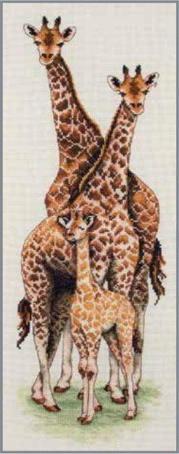 Giraffe Family - Counted Cross Stitch Kit