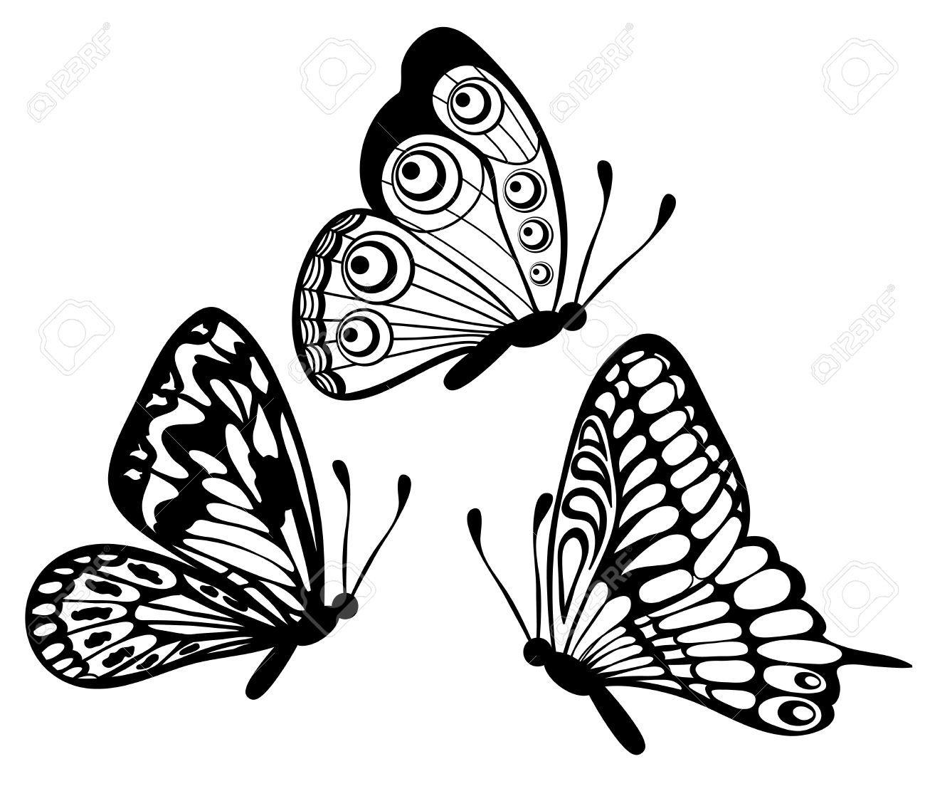 Monarch Butterfly Flying Stock Illustrations Cliparts And Royalty Kelebekler Siyah Ve Beyaz Siyah