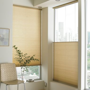 Jcpenney Home Custom Top Down Bottom Up Cordless Cellular Shade Found At Jcpenney Cordless Cellular Shades Home Decor Cellular Shades