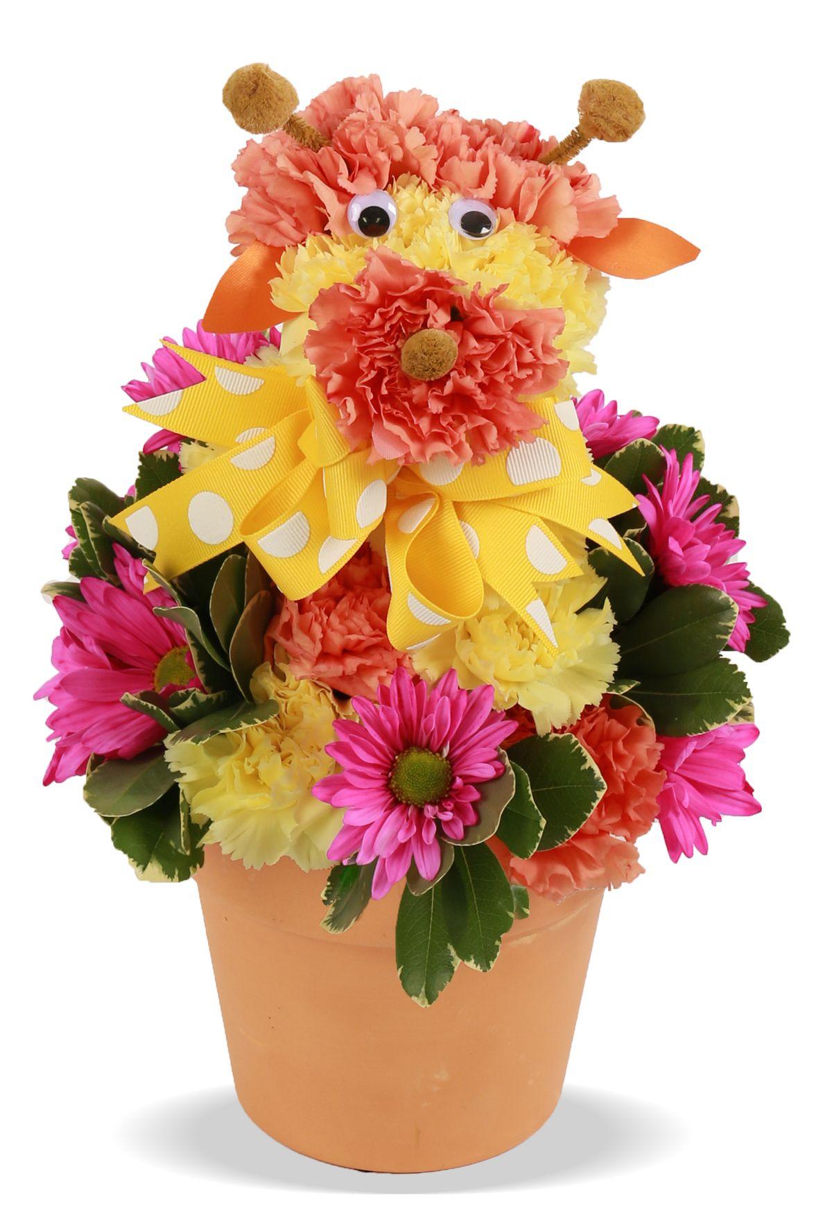 Httpfloweramacolumbusflowersbirthday Flowers For Kids