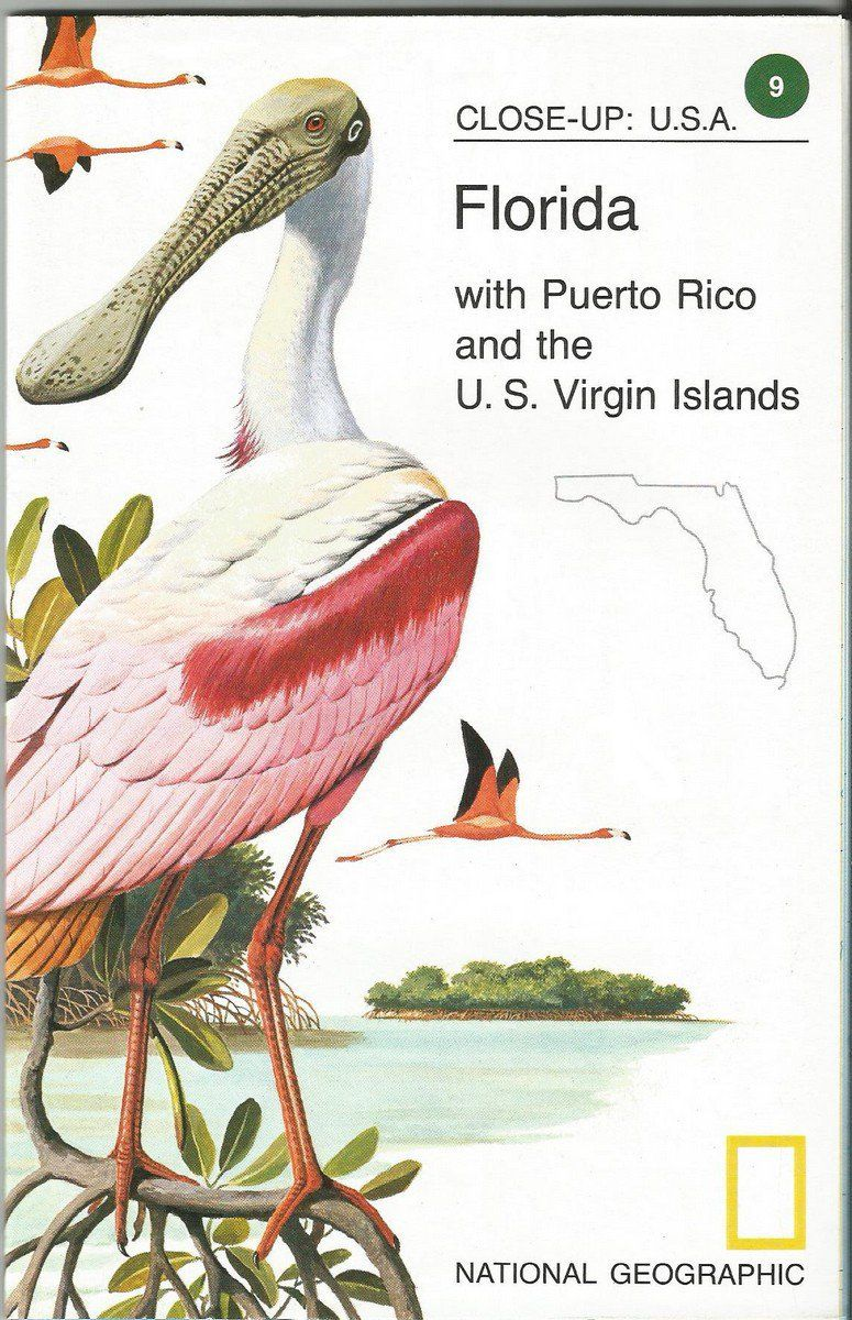 Vintage Close-Up USA National Geographic Map Florida with Puerto Rico Virgin Islands