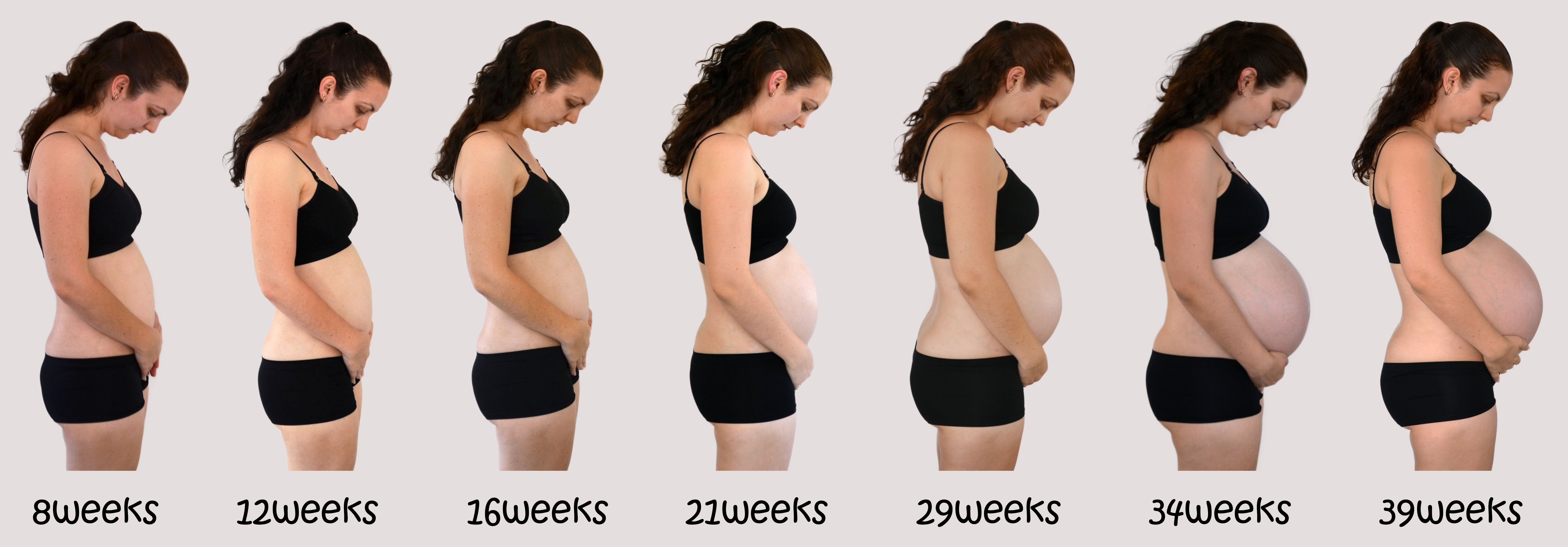 Month By Month Pregnant 15
