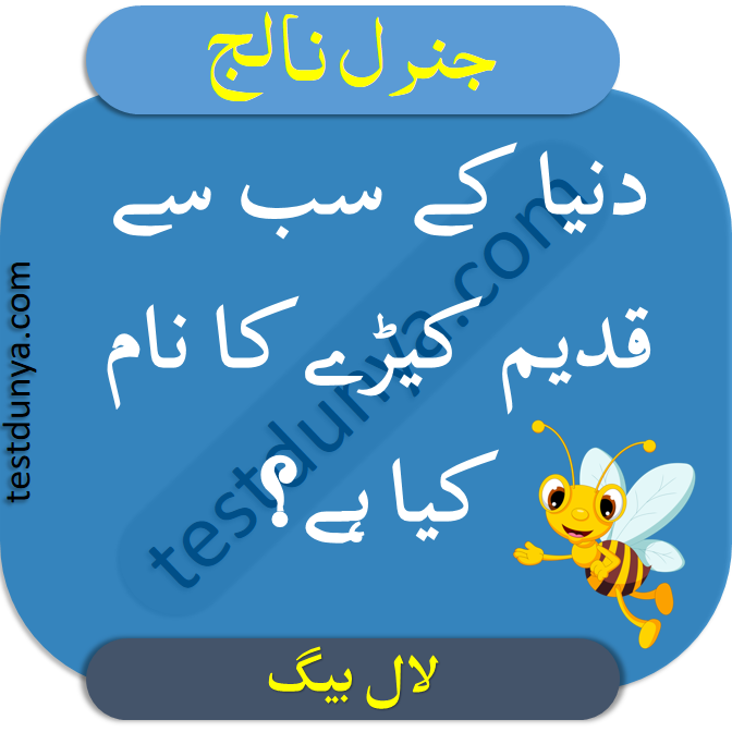 General Knowledge Questions and Answers in Urdu | TestDunya in 2020 | General knowledge ...