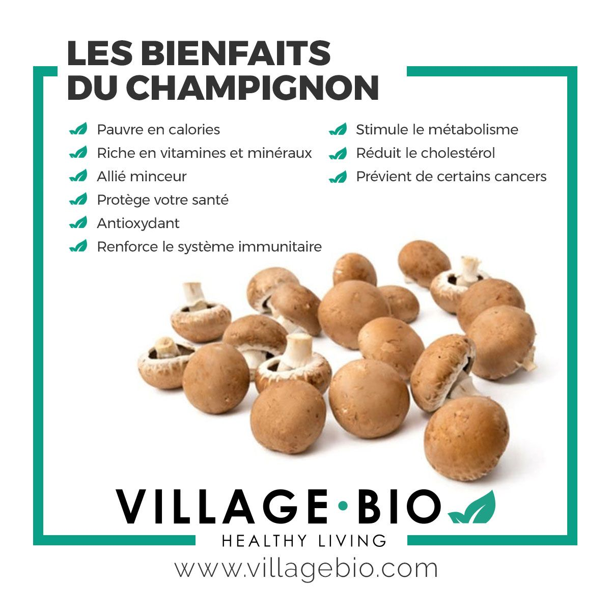 Mangue séchée Bio   Aliments bons pour la santé, Alimentation et santé, Conseils alimentaires