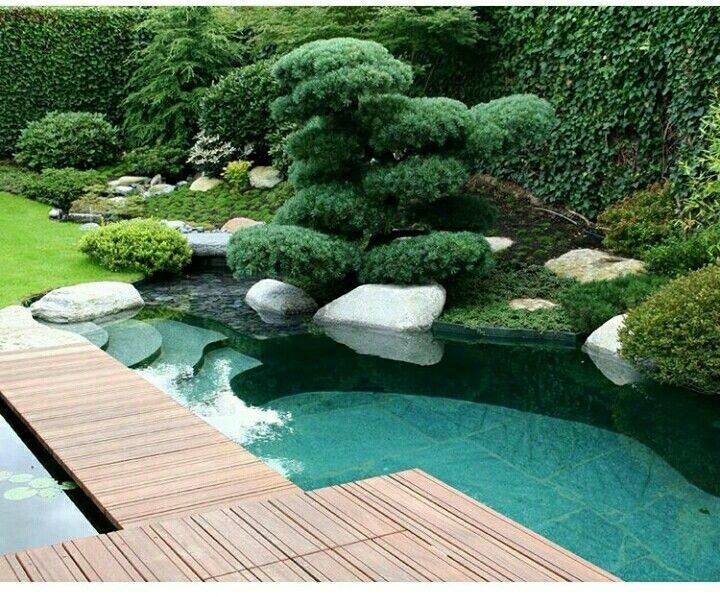 Pin By Aramis Hernandez Caraballo On Landshaftnyj Dizajn Natural Pool Pool Landscaping Backyard Landscaping