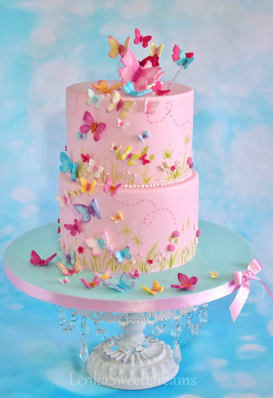 Butterfly Cake. A butterfly cake for a little baby girl