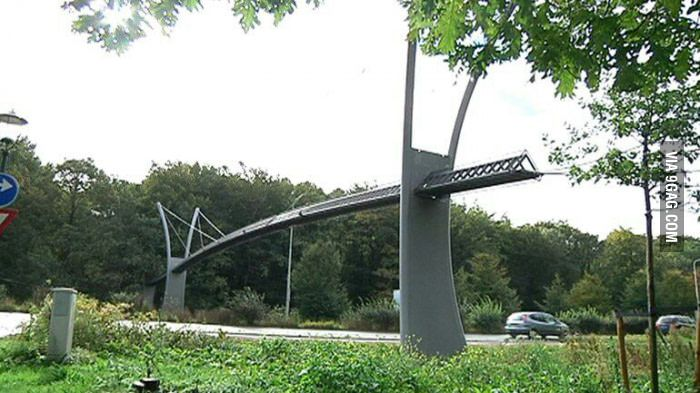 This is a squirrel bridge in Den Haag, The Netherlands. It costs €150.000. 2 squirrels used it in 2015. - 9GAG