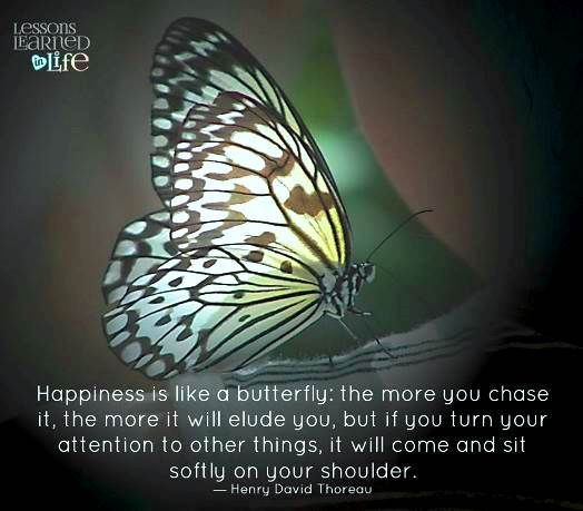 Happiness Is Like A Butterfly With Images Words To Live By