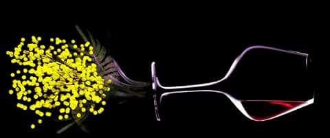 • AUGURI • #festadelladonna #women #pink #flowers #wine #mimosa #festa #party #lelamparealfortino #love #happy #amazing #ottomarzo #pernondimenticare #donne #diritti