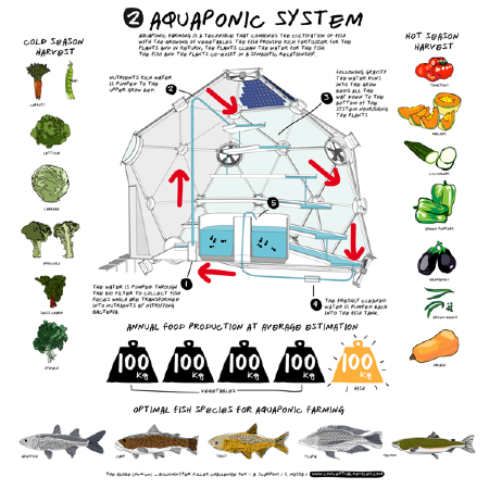 Insanely cool semi closed loop aquaponic system could for Closed loop gardening