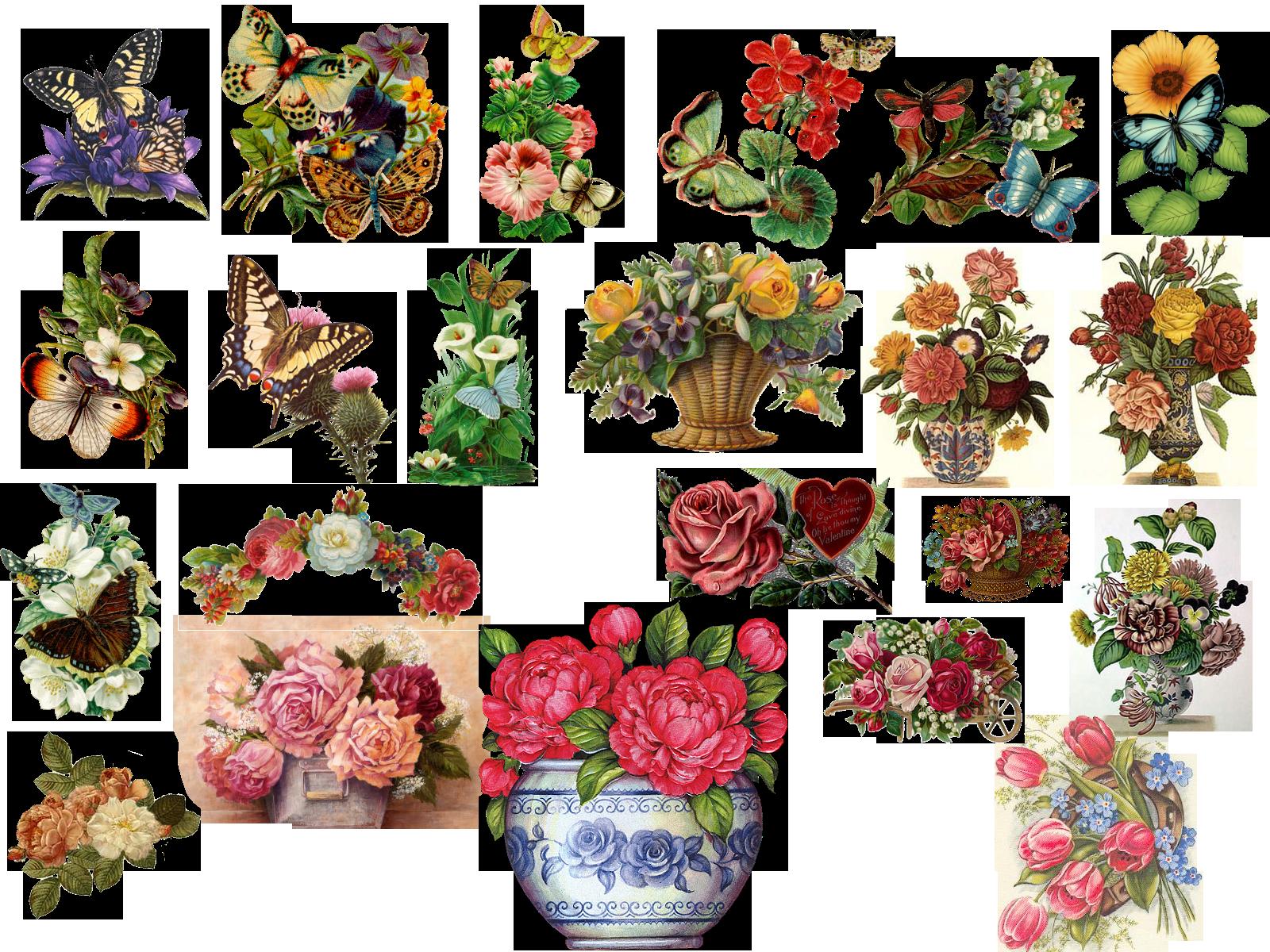 Vintage flowers clip art borders vintage flowers by hasiyne vintage flowers clip art borders vintage flowers by hasiyne dhlflorist Image collections