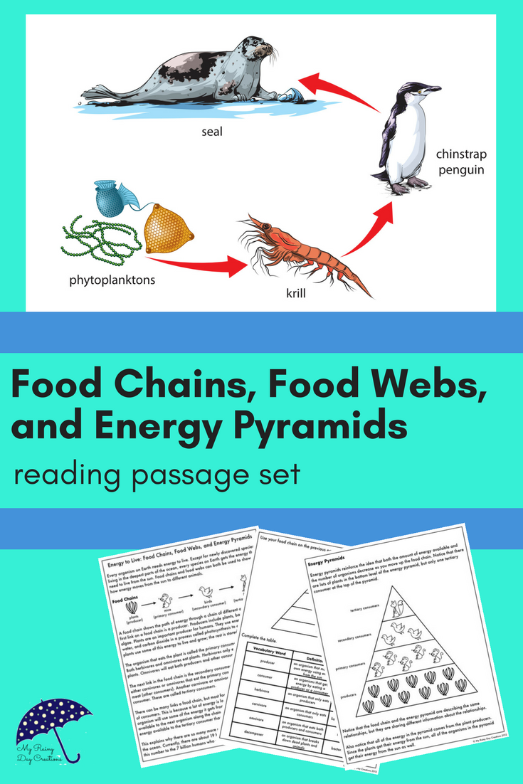 Food Chains, Food Webs, and Energy Pyramids: Reading Passage and ...