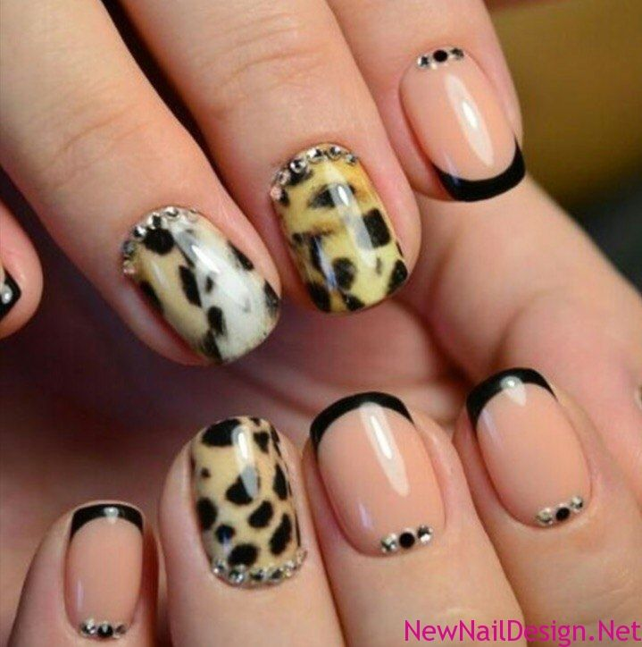 Leopard Nail Designs | Nail Design