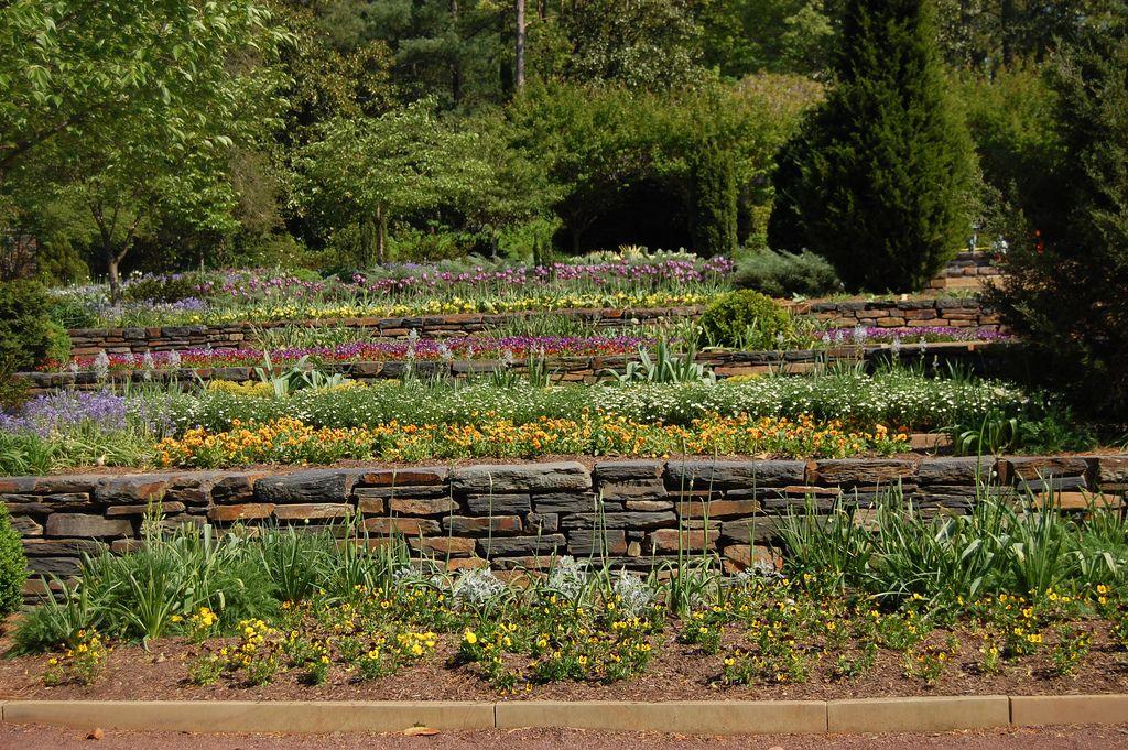 Hillside Terrace Gardens How To Build A Terrace Garden In Your Yard Hillside Garden Terrace Garden Terrace Garden Design