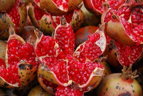 a pomegranate lotus