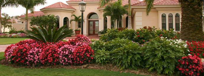 Simple Front Landscaping Ideas Florida Landscaping Ideas Built For Anyone Southern Landscaping Florida Landscaping Residential Landscaping
