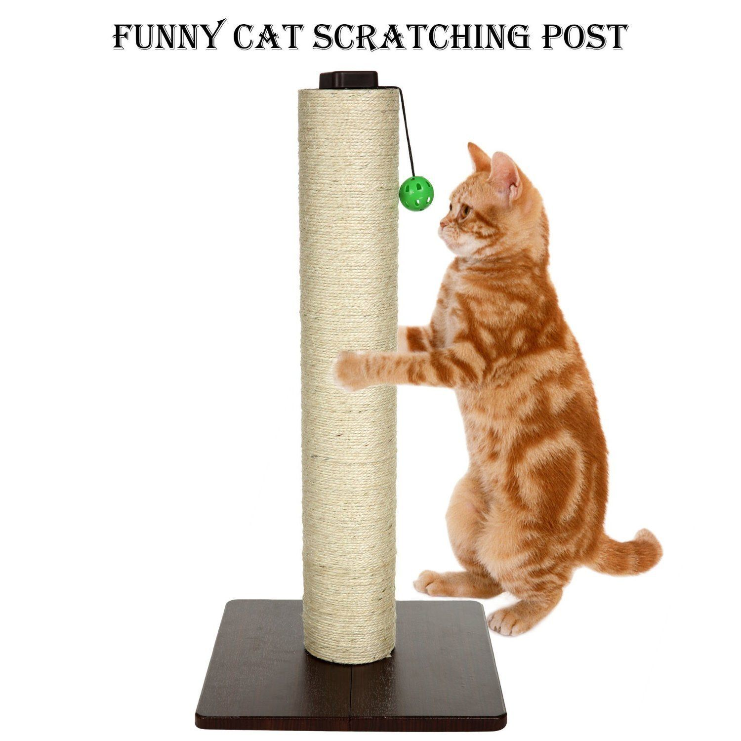 Pet Smart Cat Ultimate Scratching Post And Play Cat Scratcher